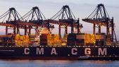 Rotterdam port — Stock Photo