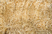 Straw background — Stock Photo