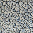 Steppe cracked clay earth — Stock Photo