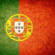 Flag of Portugal — Stock Photo #34908717