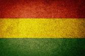 Grunge Flag of Bolivia — Stock Photo