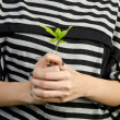 Hand with plant — Stock Photo