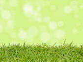 Green grass with abstract background blurring — Stock Photo