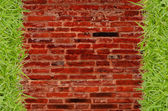 Green grass and brick wall background — Stock Photo