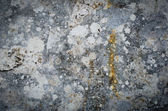 Grunge wall texture background — Stock Photo