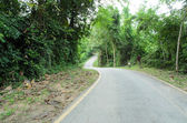 Curve asphalt road view — Foto de Stock