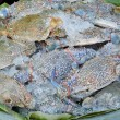 Постер, плакат: Fresh raw flower crab or blue crab