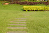 Stone way in green grass. — Stock Photo