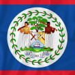 Belize flag — Stock Photo #39957041