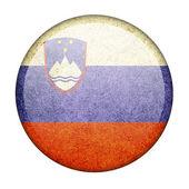 Bandiera della Slovenia — Foto Stock