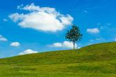 Green Sloping Meadows — Stock Photo