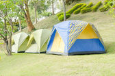 Camping tents in the forest — Foto Stock