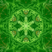 Green Mandala Star — Stock Photo