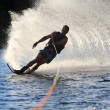 Royalty-Free Stock Photo: Waterskiing on Colrado River
