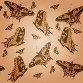 бабочки — Cтоковый вектор