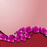 Orchid met een roze — Stockvector