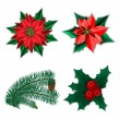 Set of Christmas decorations — Stock Vector #38452729