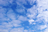 Beau ciel bleu — Photo