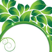 Floral environmental background — Stock Vector