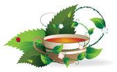 Cup of herbal tea — Stock Vector