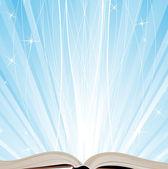 El libro y las luces brillantes — Vector de stock