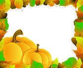 Zucche e foglie — Vettoriale Stock