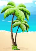 Palm trees on a beach — Stock Vector