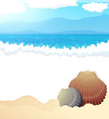 Tropical beach with seashells — Stock Vector