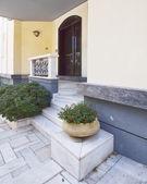 Elegant house door and flowerpot — Stock Photo