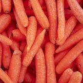 Fresh carrots closeup — Stock Photo