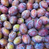 Earth treasures, fresh prunes — Stock Photo