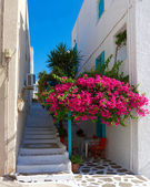 Blue white terrace and bougainvillea in a Greek island — Stock Photo