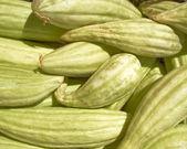 Fresh green muskmelons — Stock Photo