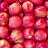 Crunchy red apples — Stock Photo