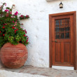 Brown wooden door and huge flower pot — Stock Photo
