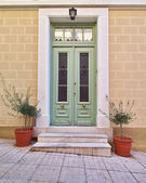 Colorful house door and flowerpots — Stock Photo