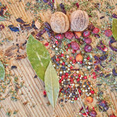 Forest berries and nuts — Stock Photo