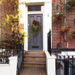 House entrance, Christmas decorated — Stock Photo #38599143