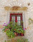 Picturesque window and flowerpots — Stock Photo