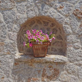 Terracotta flowerpot and stonewall — Stock Photo