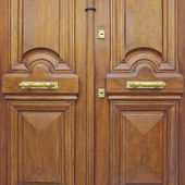 Natural walnut wood door — Stockfoto