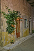 House doors and flower, scenic night view, Greece — Stock Photo