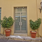 House entrance with flowerpots — ストック写真