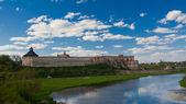 Medzhybizh cossack castle — Stock Photo