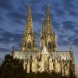 Cologne Cathedral at Night — Stock Photo #46998059