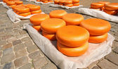 Gouda Cheese — Stock Photo