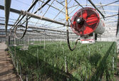 Heater in a Greenhouse — Stock Photo