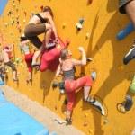Climbers — Stock Photo #49729037