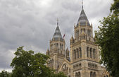 Natural history museum london — Stockfoto