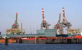 Rotterdam Harbor — Stock Photo